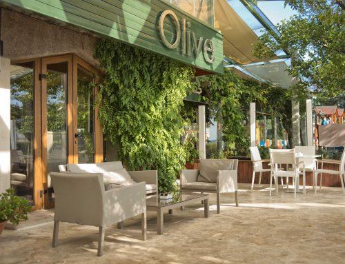 Olive Restaurant & Bar @ Sveti Stefan