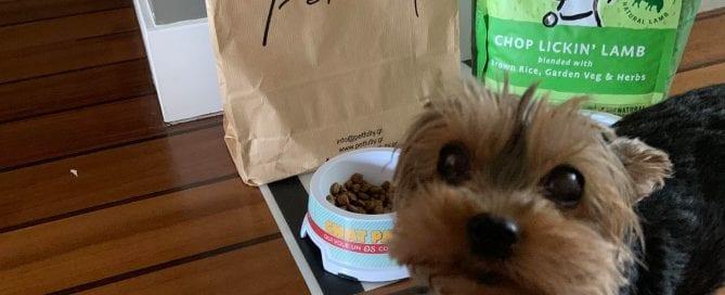 Petfully.gr - Το απόλυτο eshop για το κατοικίδιο σας